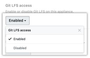 Acesso ao Git LFS