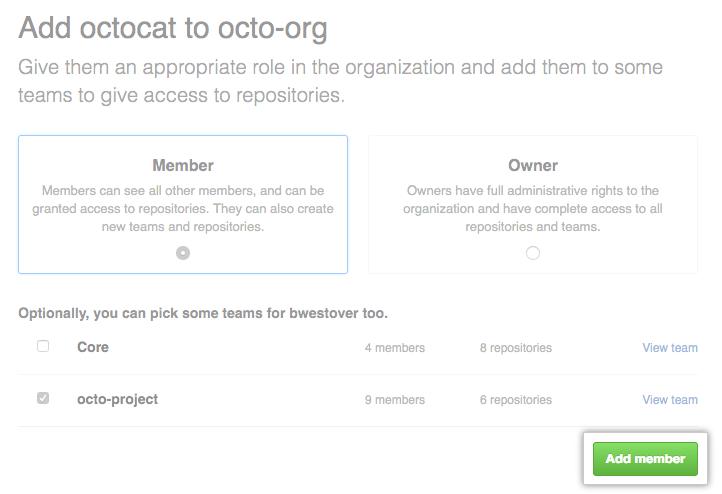 Opções de função e equipe e botão de adição de integrante
