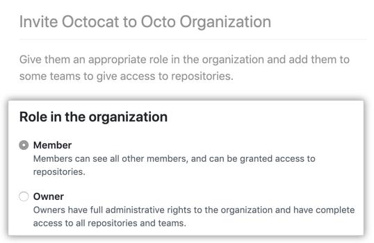 将用户设为会员或所有者的选项