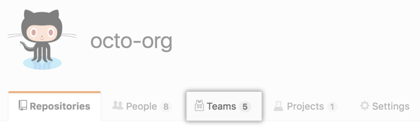 Aba de equipes na página da organização