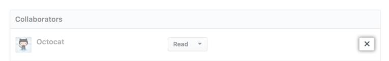 """""""X"""" ícone de remoção ao lado do nome do usuário do colaborador"""